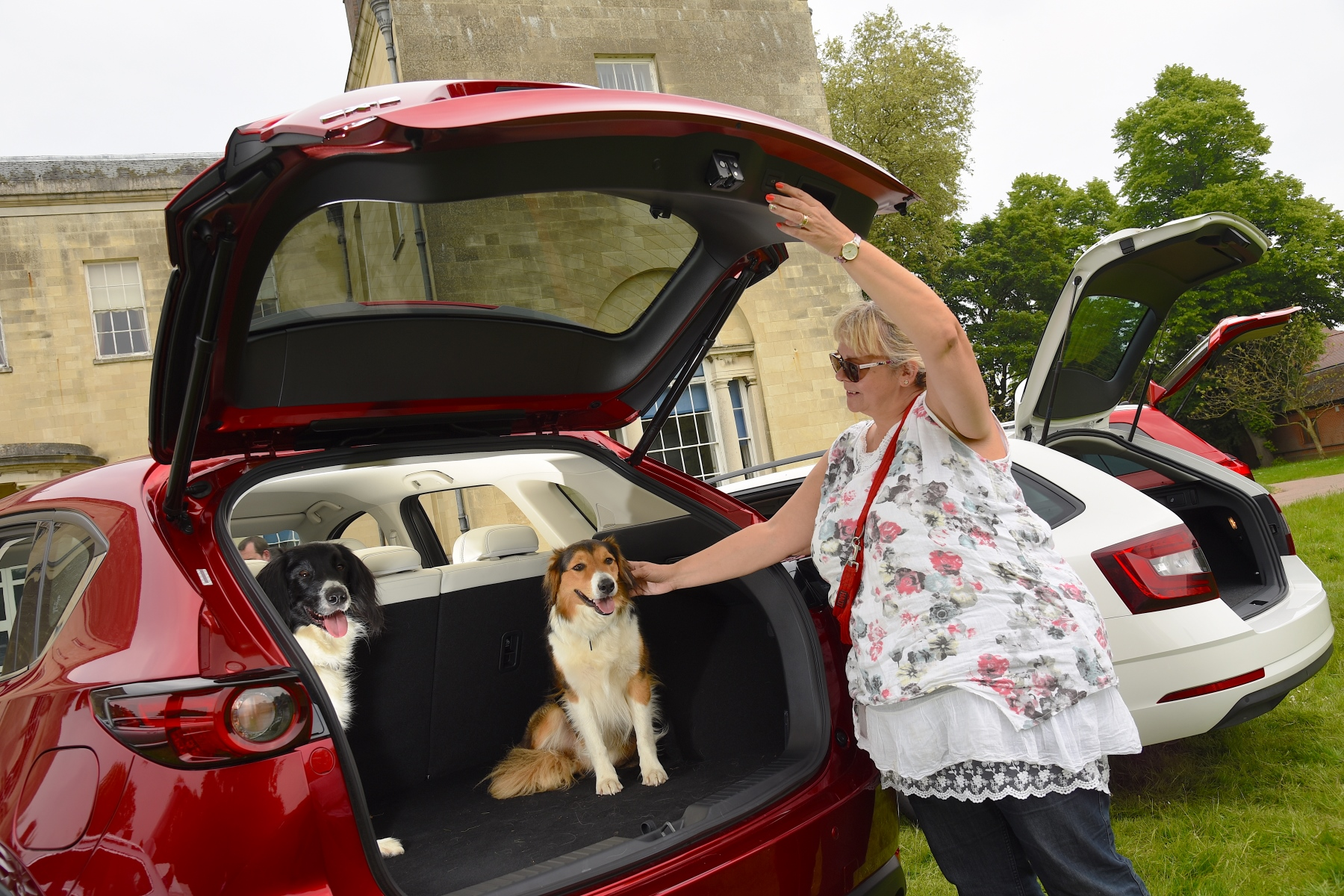 Mazda CX-5 voted most dog-friendly car