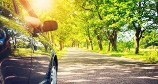summer driving glare - IAM RoadSmart